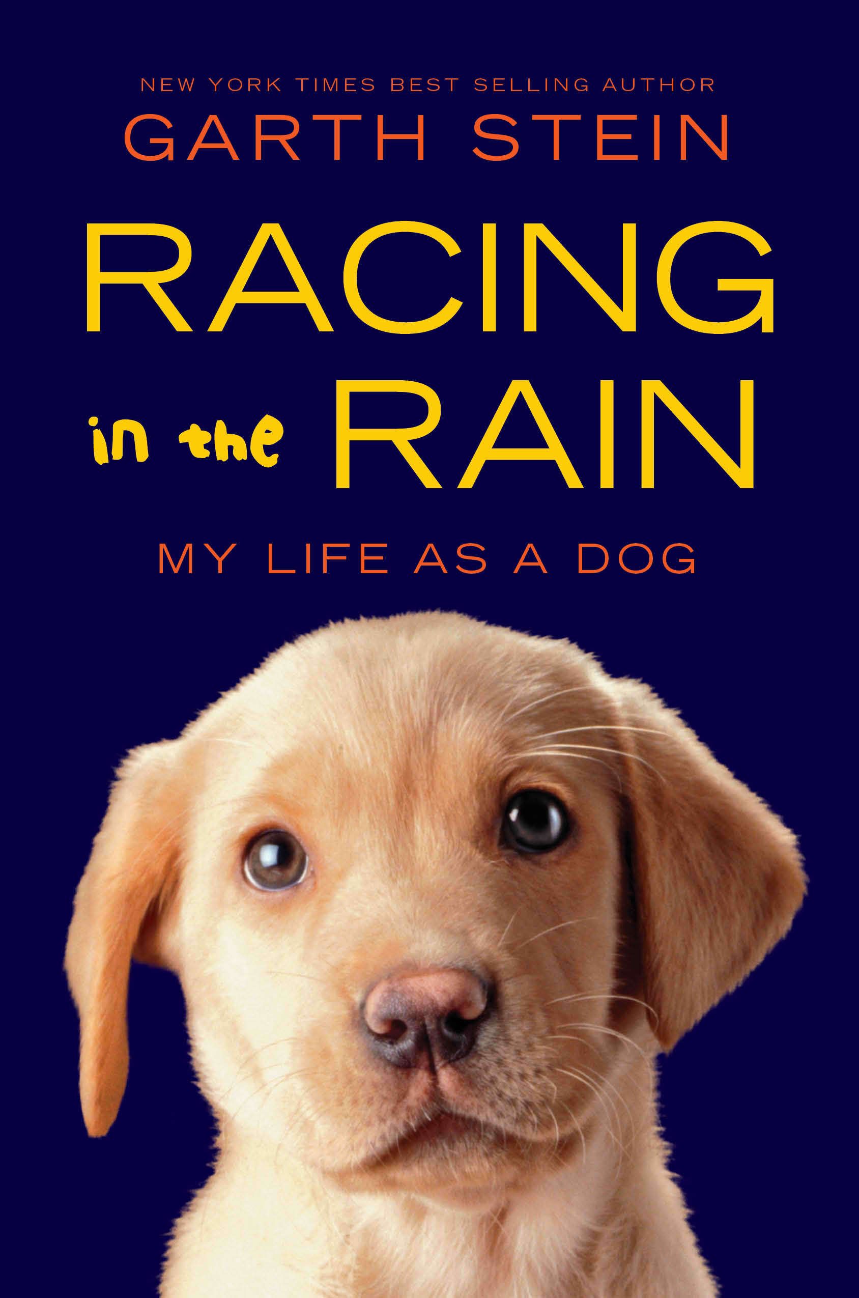 The Art of Racing in the Rain Summary & Study Guide